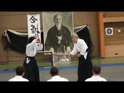 Aikido Stage Luc sur Mer 2019 Demo 3 Kumijo