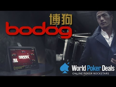 Bodog88 — video review in 2018