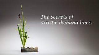 The Secrets Of Artistic Ikebana Lines