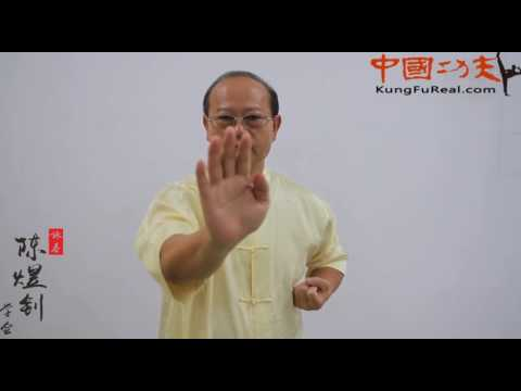 wing chun course online----wing chun  form  tutorial