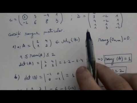 Model de opțiune binară