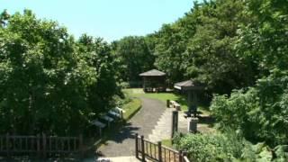 北海道観光映像(釧路湿原)