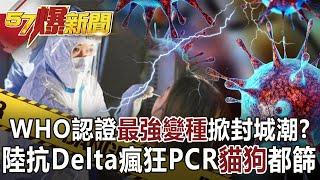 【57爆新聞】WHO認證「最強變種」掀封城潮? 陸抗Delta瘋狂PCR「貓狗」都篩