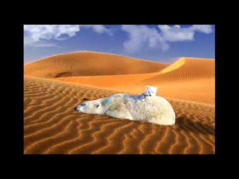 dykumos svorio metimas