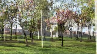 preview picture of video 'foto reportaje Parc de sant Martí de Provençals'