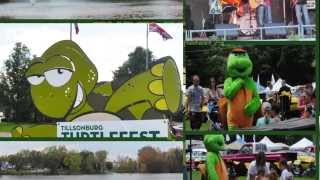 preview picture of video 'Tillsonburg TurtleFest 2014 Teaser'