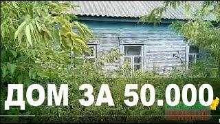 Как Купить ДОМ В ДЕРЕВНЕ за 50 тыс. Руб. обзор дома