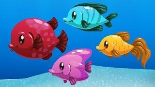 Kırmızı Balık Ile Renkleri Öğreniyorum | Renkleri Öğreten Şarkı
