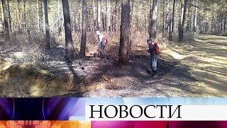 В Бурятии задержан предполагаемый виновник масштабного лесного пожара.