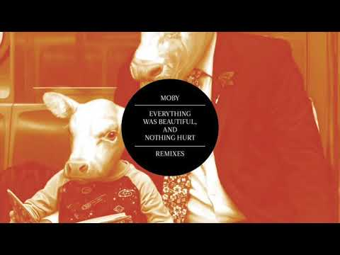 Moby - The Last of Goodbyes (Criminal Solace Remix)