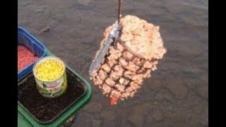 Река маныч ставропольский край рыбалка
