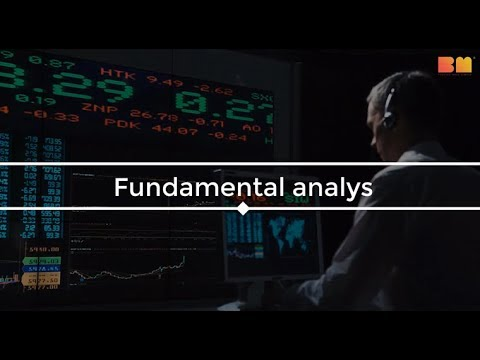 Lär Dig Trading – Fundamental Analys