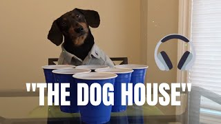 Crusoe the Dachshund - Welcome to The Dog House [Official Video]