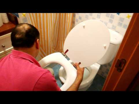 Cambiar la tapa y asiento del inodoro.