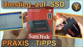 Ratgeber: Umstieg von Festplatte auf SSD - Was ist zu beachten?