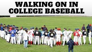 Walking On College Baseball Team