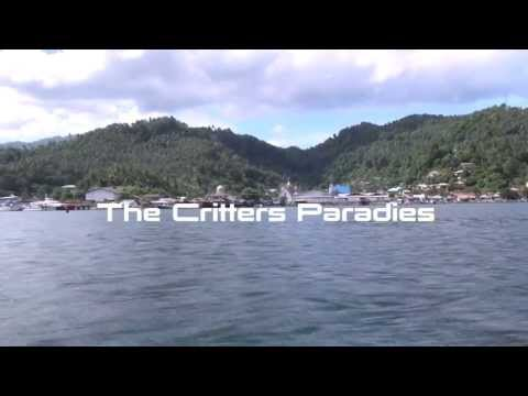 Lembeh Strait - The Critters Paradies