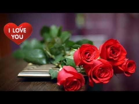 Love u bangaram status - смотреть онлайн на Hah Life