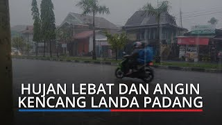 Hujan Lebat dan Angin Kencang Melanda Padang, BPBD: Waspada Pohon Tumbang