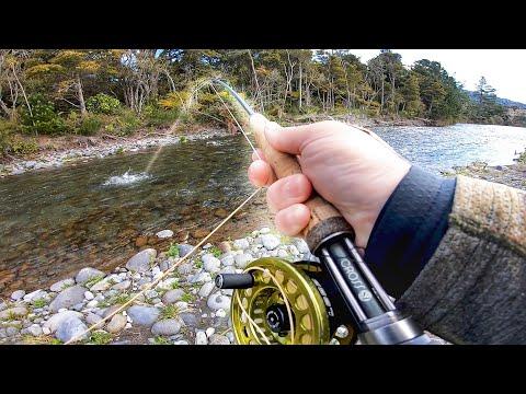 Fluefiskeri efter ørreder i en klarvandet elv