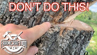 No Nonsense Guide to Tree Felling.  How to cut down a tree safely.  FarmCraft101