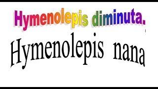 hymenolepis nana life cycle - मुफ्त ऑनलाइन