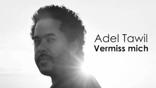 Adel Tawil Vermiss Mich