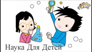 Наука для детей ECDHUB.com