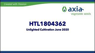 HTL1804362 2020 3