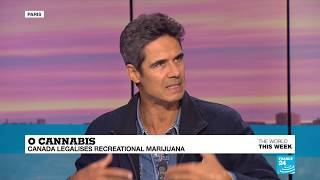 """Decriminalisation of cannabis: """"It''s better than to have no apparatus to deal with drug dealing"""""""