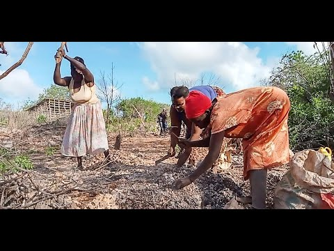 Digging to survive: The female quarry workers toiling in Lamu