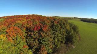 Fall Colors FPV and shadow chasing