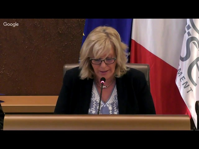 Vote du budget primitif 2019 - Séance plénière de l'Assemblée départementale (matin)
