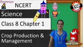 NCERT Class 8 Science Chapter 1: Crop Production & Management (NSO/NSTSE/Olympiad) | English