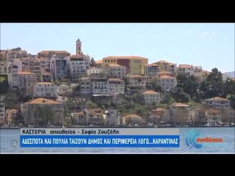 Καστοριά | Δήμος & Περιφέρεια ταΐζουν τα αδέσποτα! | 08/04/2020 | ΕΡΤ