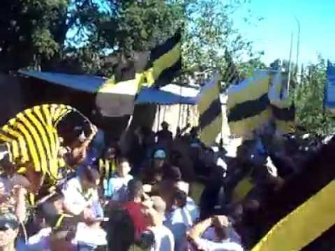 """""""ALMIRANTE-NO TENGO UN MANGO"""" Barra: La Banda Monstruo • Club: Almirante Brown"""