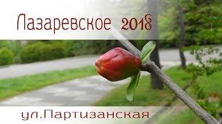 ул. Партизанская в Лазаревском 2018 год (май)