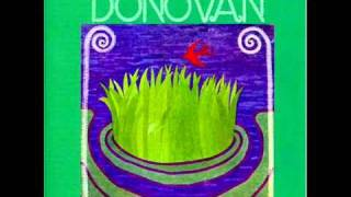 Donovan-Get Thy Bearings (Original)