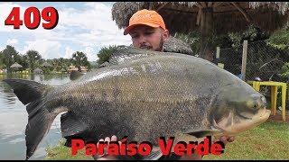 Tambacus na anteninha no Paraíso Verde - Fishingtur na TV 409
