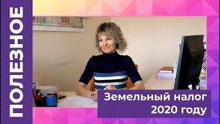 Земельный налог в 2020 году: ставка, как рассчитать, льготы и сроки уплаты