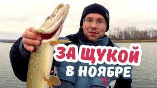 Васильсурская слобода - рыболовная база