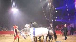 preview picture of video 'Big Apple Circus 2013 (Horse Act)'