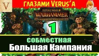 Совместное прохождение за Лесных Эльфов Total War: Warhammer (Verus и Master KBAC)
