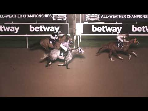 Foxy Boy wins at Wolverhampton 19th January 2019