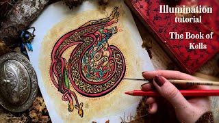 How To Draw Illuminated Letter T From Book Of Kells ~ Celtic Art & Manuscript Illumination Tutorial