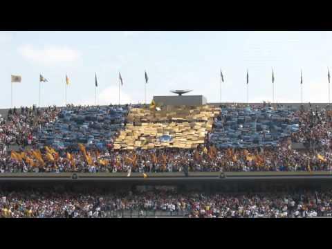 """Pumas  vs   tigres  27 septiembre  2015"" Barra: La Rebel • Club: Pumas"