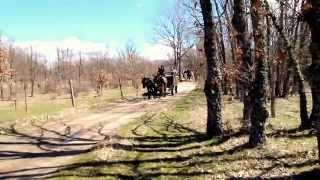 Video del alojamiento Alojamientos El Bosque
