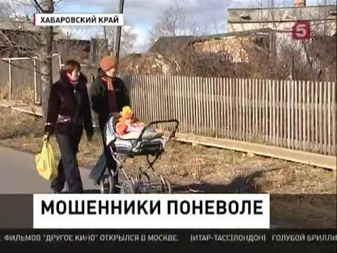 В Хабаровском крае вскрыли незаконную схему обналичивания материнского капитала