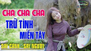 dat-phuong-nam-lk-nhac-song-tru-tinh-bolero-mien-tay-say-long-nguoi-nghe-nhac-hay-canh-dep