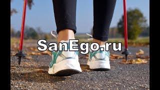 Интернет-магазин SanEgo.ru (наши контакты)